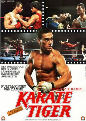 Bild::Karate Tiger